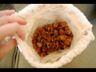 soap nuts - feature