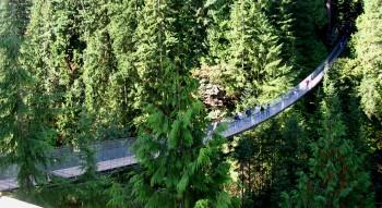Capilano Bridge