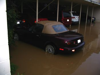 Unhappy Miata in flood